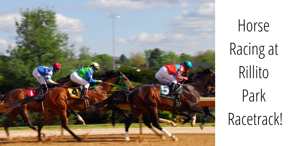 The Rillito Horse Track has been runing since 1943 and is a member of the National Historic Places registration. It is also the birthplcae of modern-day quarter-horse racing and the Photo Finish!